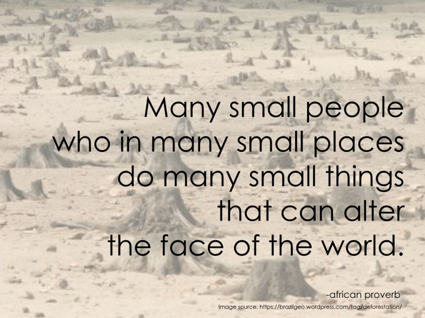 Many small actions can alter the face of the world